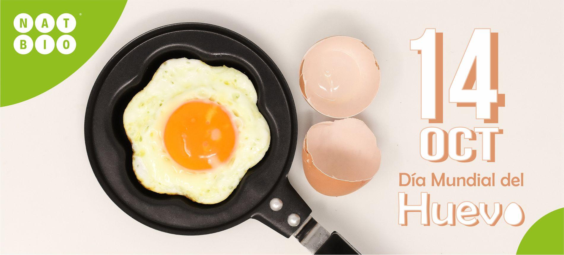¿Sabe usted cuales son las características de un huevo fresco?